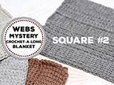 WEBS Mystery Crochet-A-Long Square #2