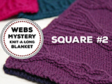 WEBS Mystery Knit-A-Long Square #2