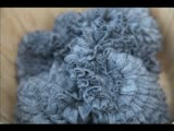 Latest Trends: Ruffle Yarns